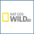 national-geographic-wild-hd